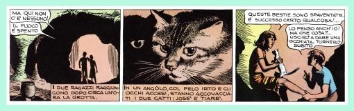 lisola-giovedi-gatos-6